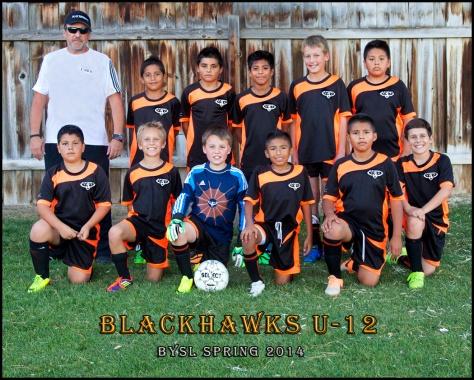 Blackhawks Spring 2014